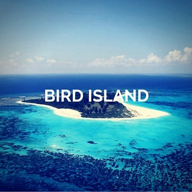 seychelles-luxury-yacht-bird-island
