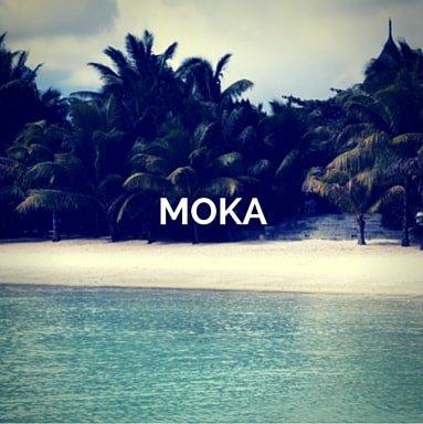 mauritius-yacht-charter-moka