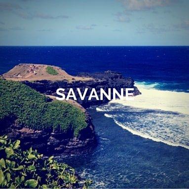 mauritius-yacht-charter-savanne