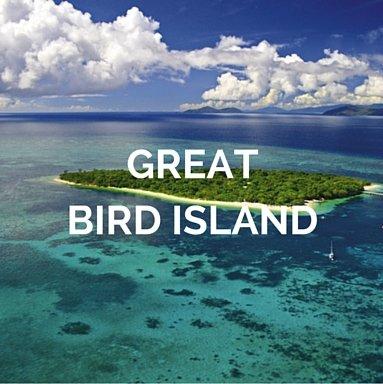 antigua-and-barbuda-yacht-charter-boat-rental-grat-bird-island