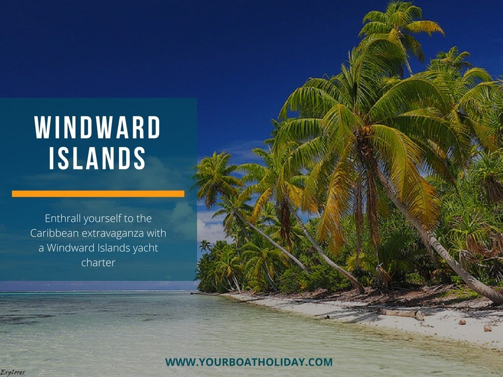 enthrall yourself to the caribbean extravaganza with a windward islands yacht charter