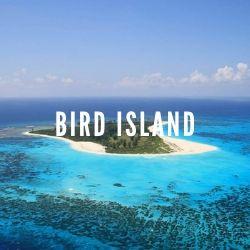 seychelles-luxury-yacht-bird-island